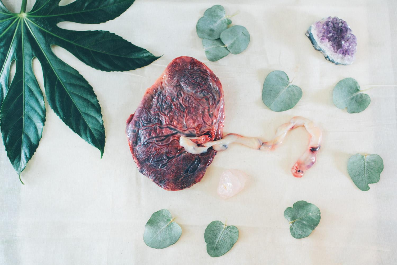 placenta17-20170730_0154-M